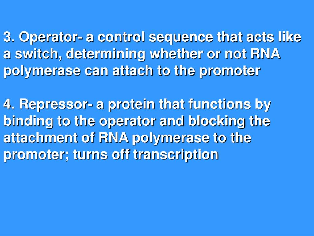 3. Operator- a control sequence that acts like a switch, determining whether or not RNA polymerase can attach to the promoter
