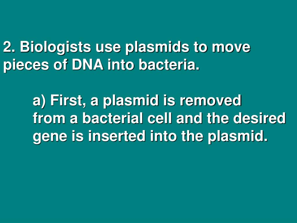 2. Biologists use plasmids to move pieces of DNA into bacteria.