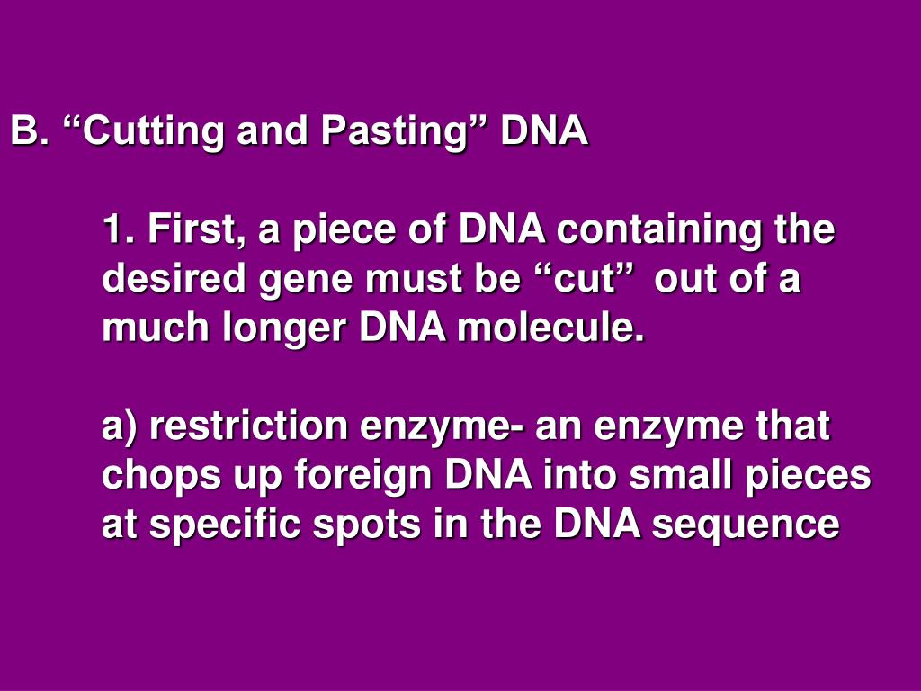 "B. ""Cutting and Pasting"" DNA"