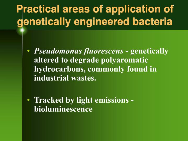Practical areas of application of genetically engineered bacteria l.jpg