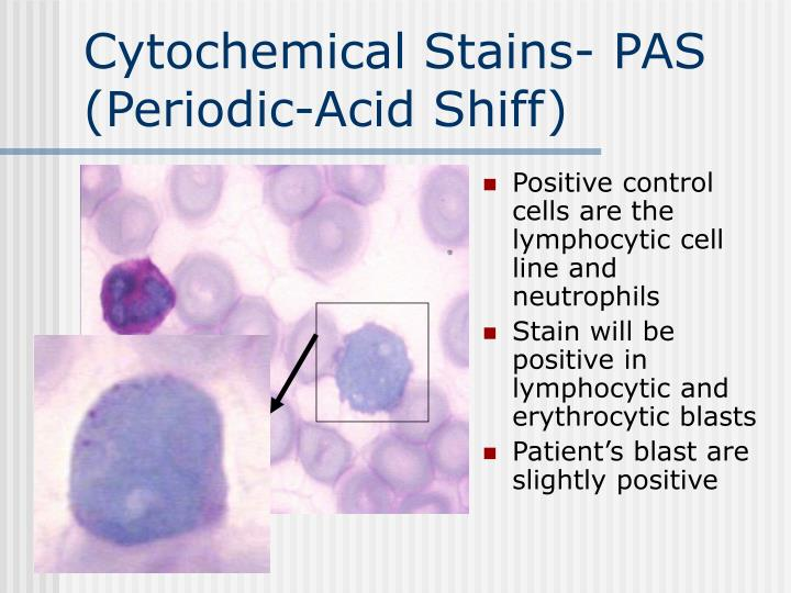 Cytochemical Stains- PAS