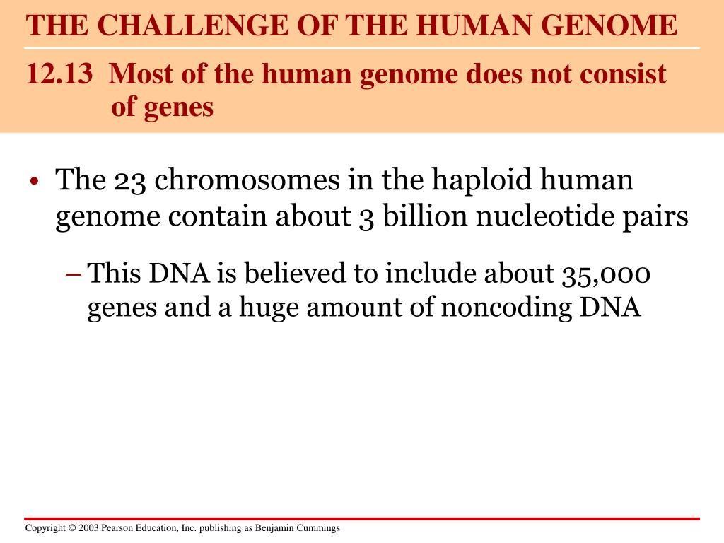 THE CHALLENGE OF THE HUMAN GENOME