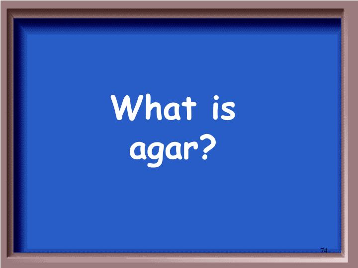 What is agar?