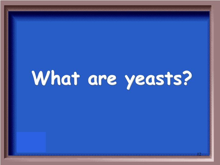 What are yeasts?