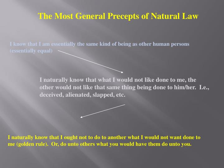 The Most General Precepts of Natural Law