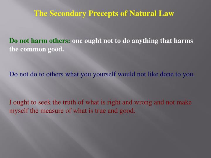 The Secondary Precepts