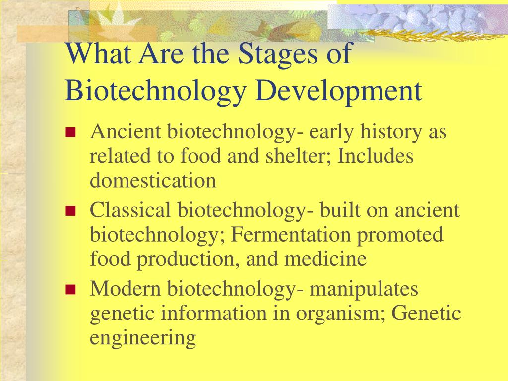 What Are the Stages of Biotechnology Development