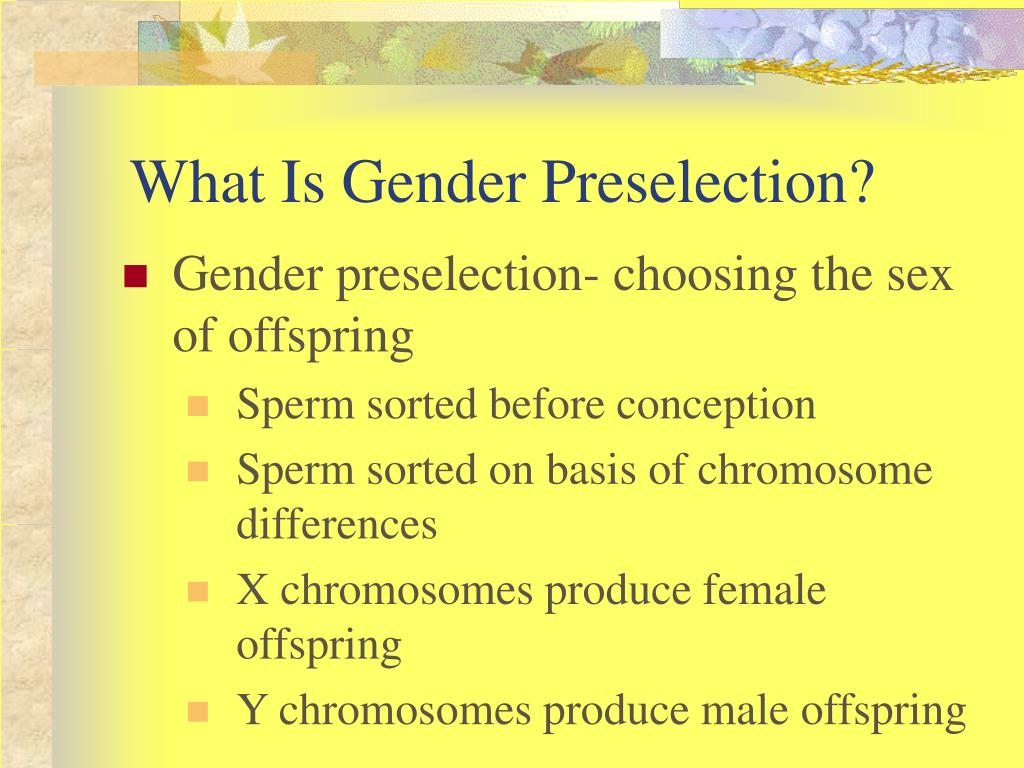 What Is Gender Preselection?