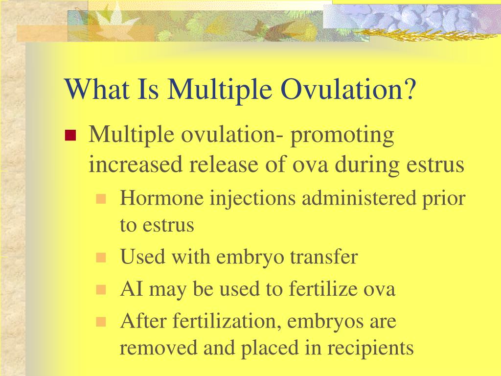 What Is Multiple Ovulation?