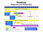 roadmap diagnostics and therapeutics