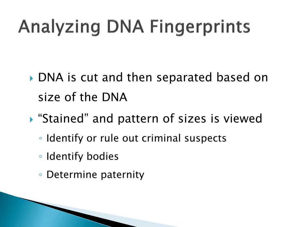 Analyzing DNA Fingerprints