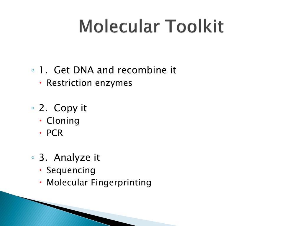 Molecular Toolkit