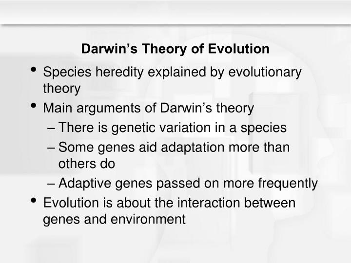 evidence of the theory of evolution essay