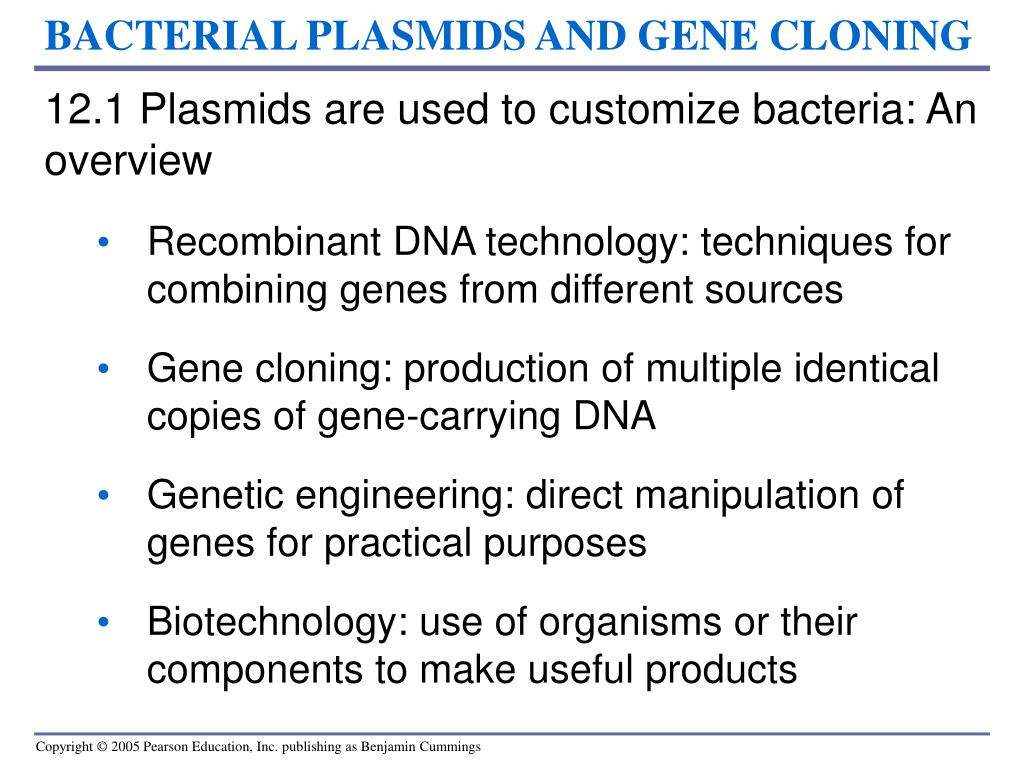 BACTERIAL PLASMIDS AND GENE CLONING