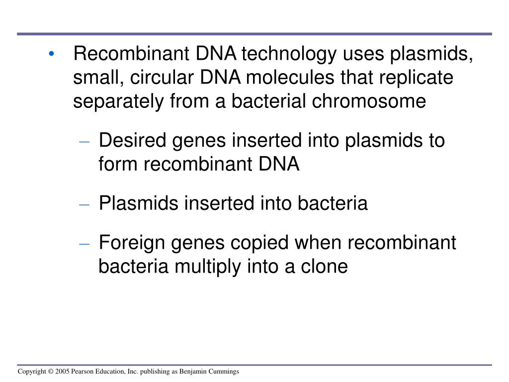 Recombinant DNA technology uses plasmids, small, circular DNA molecules that replicate separately from a bacterial chromosome