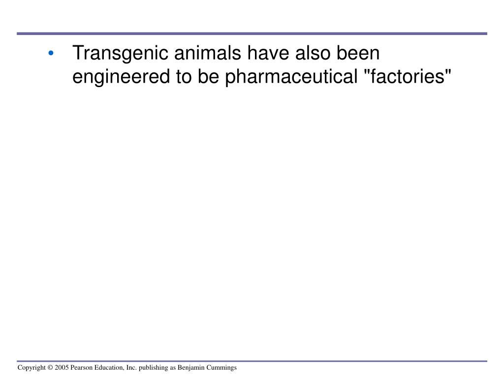 "Transgenic animals have also been engineered to be pharmaceutical ""factories"""
