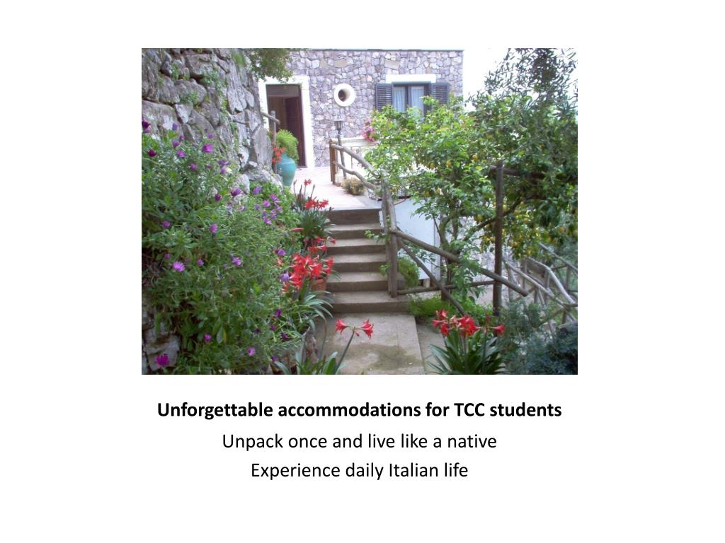 Unforgettable accommodations for TCC students