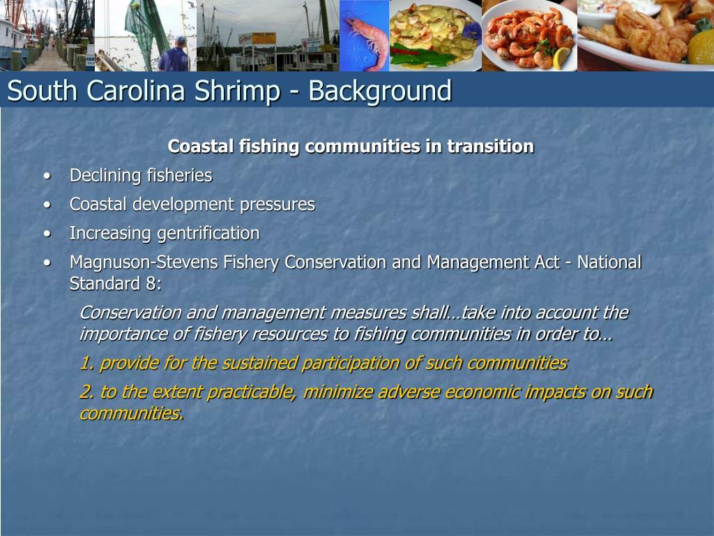 South Carolina Shrimp - Background