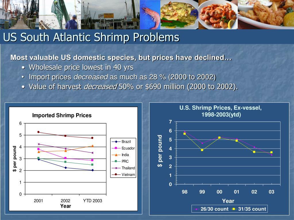 US South Atlantic Shrimp Problems