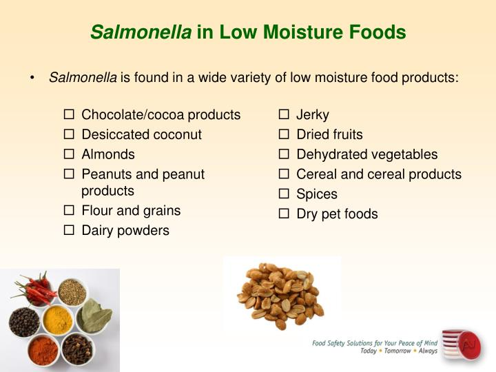 Salmonella In Low Water Activity Foods