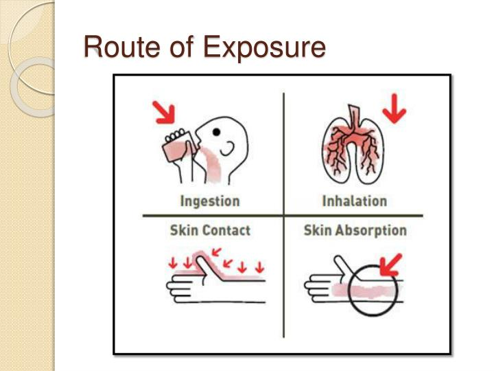 Route of Exposure