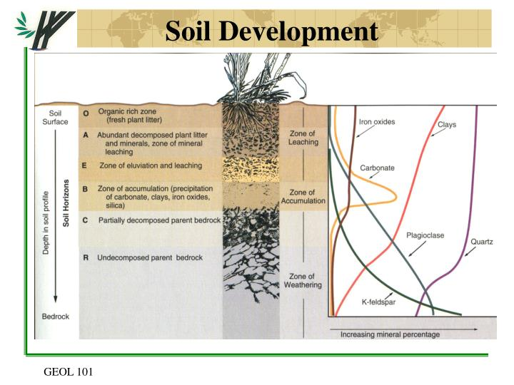 Soil Development
