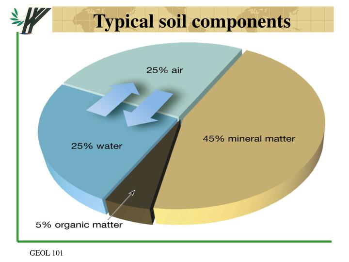 Typical soil components