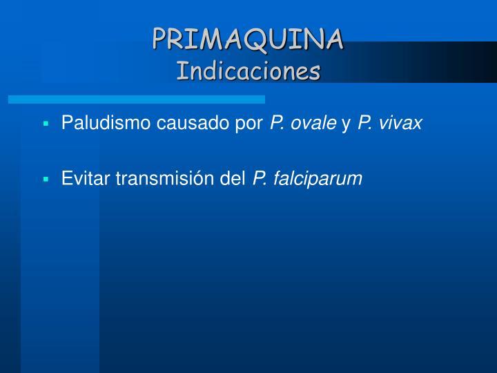 PRIMAQUINA