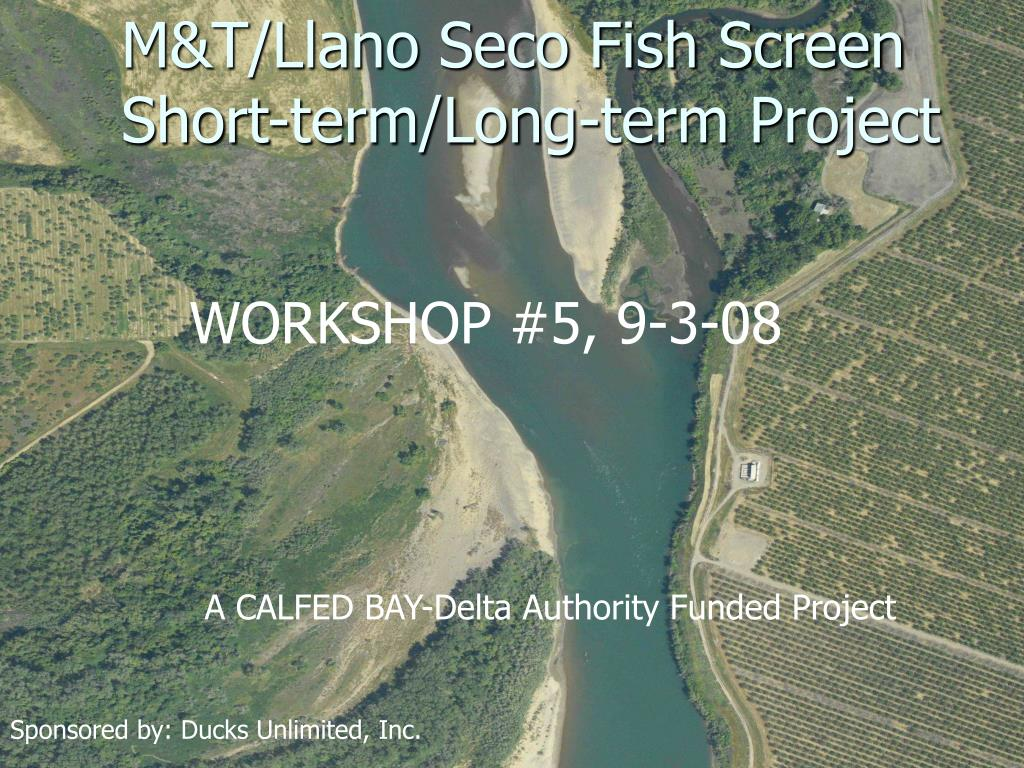 M&T/Llano Seco Fish Screen Short-term/Long-term Project