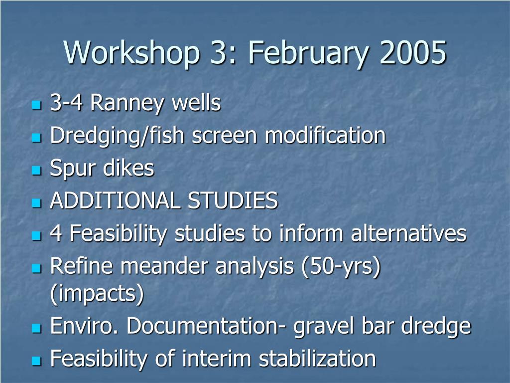 Workshop 3: February 2005