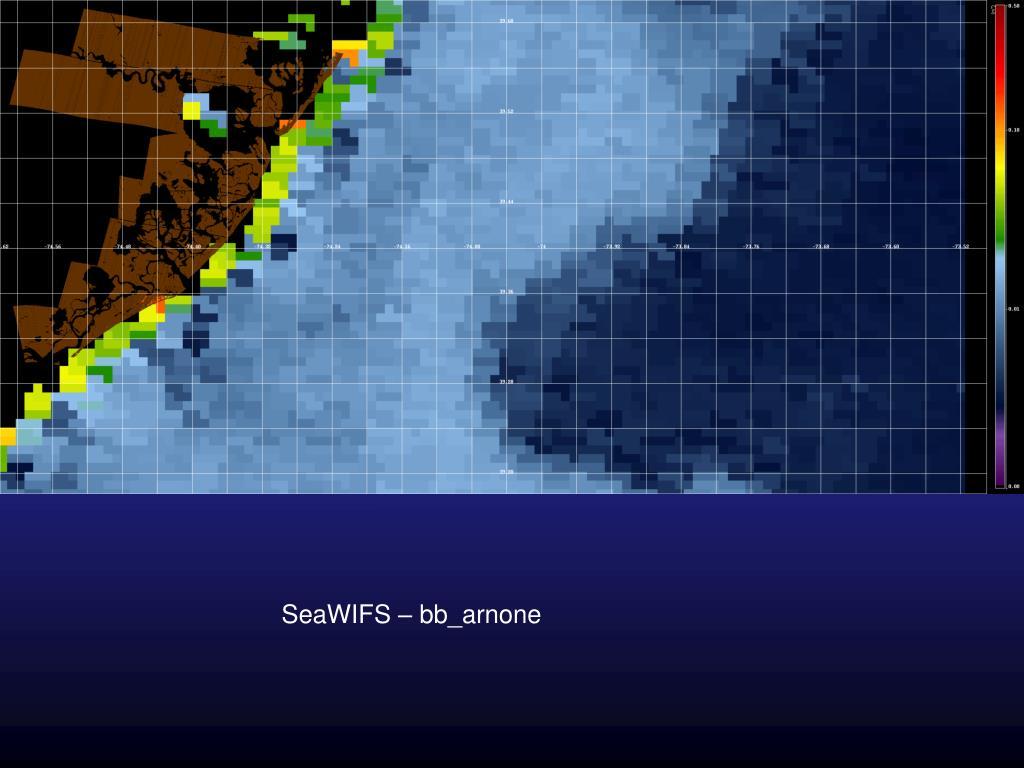 SeaWIFS – bb_arnone
