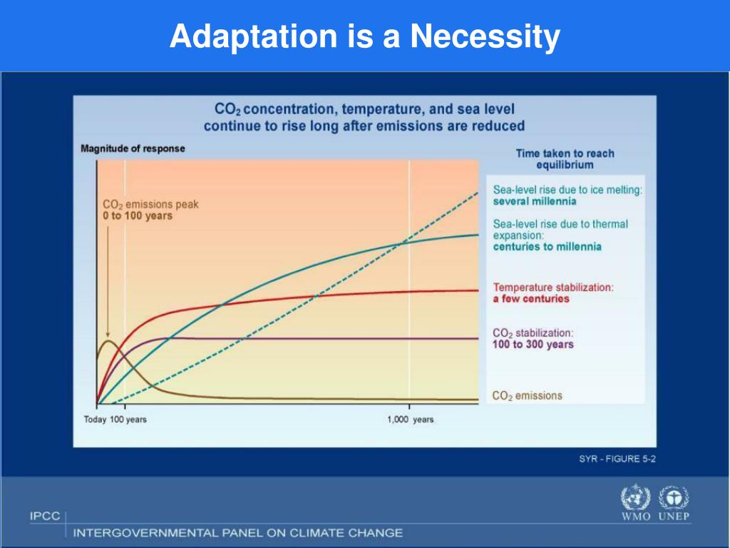 Adaptation is a Necessity