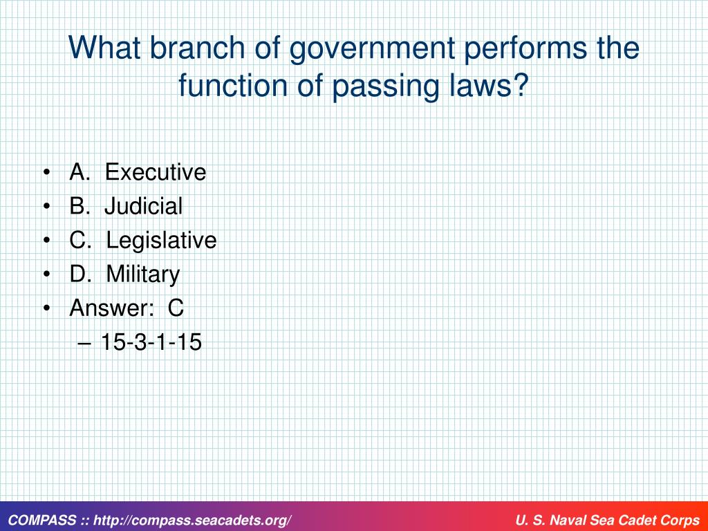 What branch of government performs the function of passing laws?