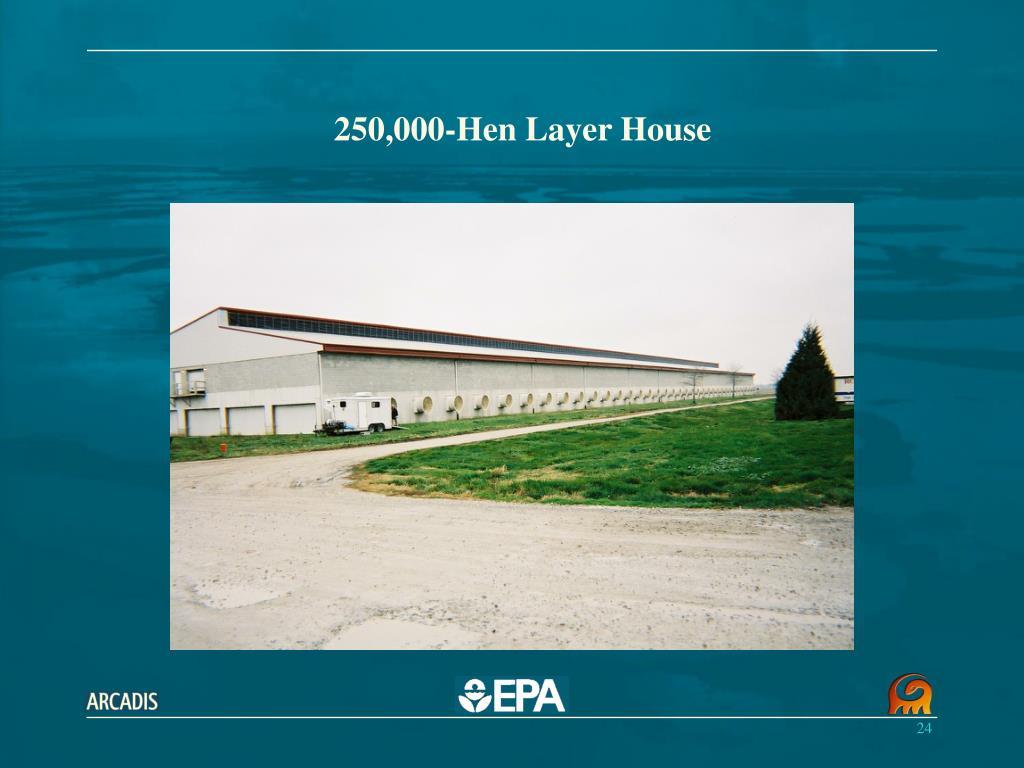 250,000-Hen Layer House