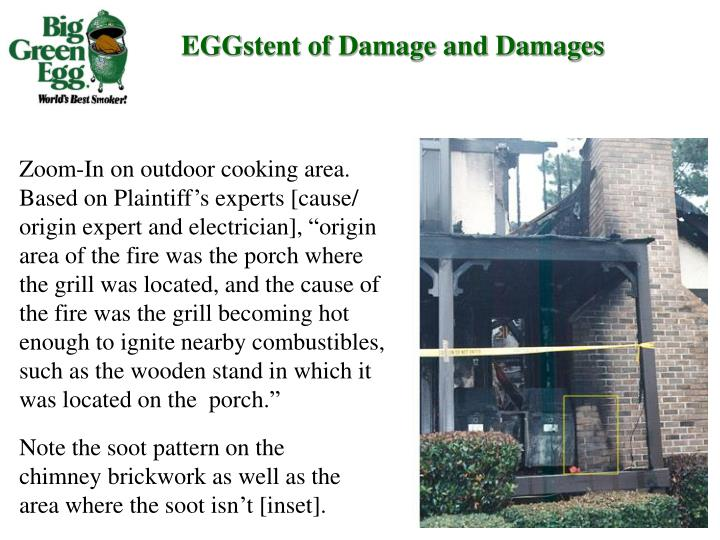 EGGstent of Damage and Damages