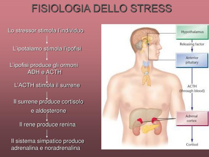 FISIOLOGIA DELLO STRESS