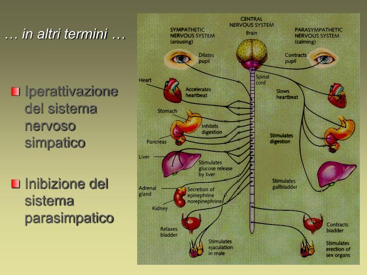 Iperattivazione del sistema nervoso simpatico