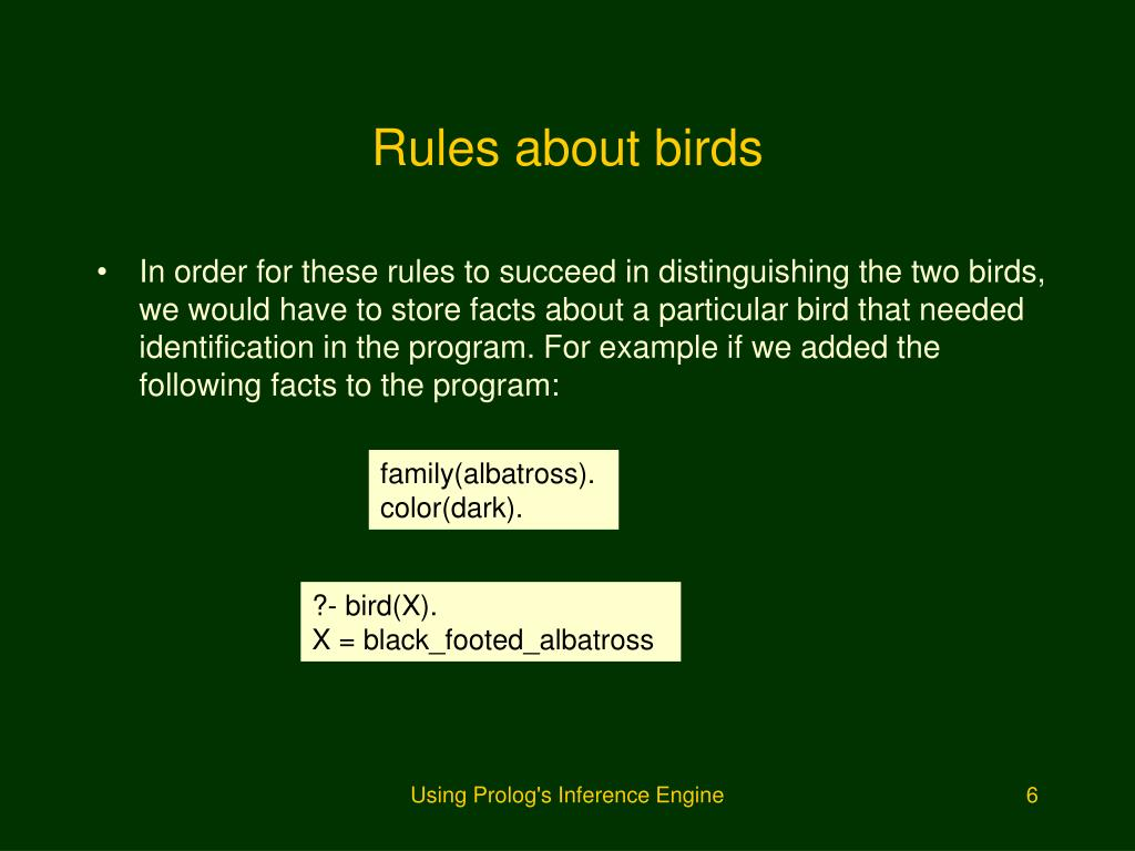 Rules about birds