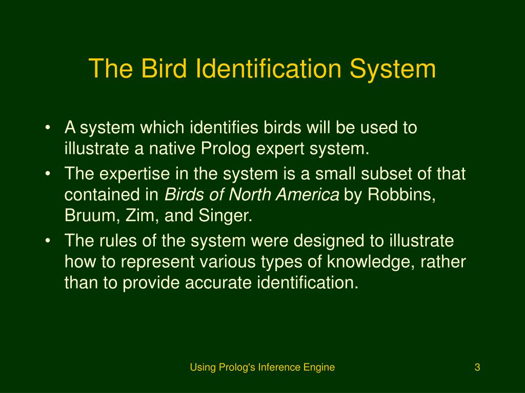 The Bird Identification System