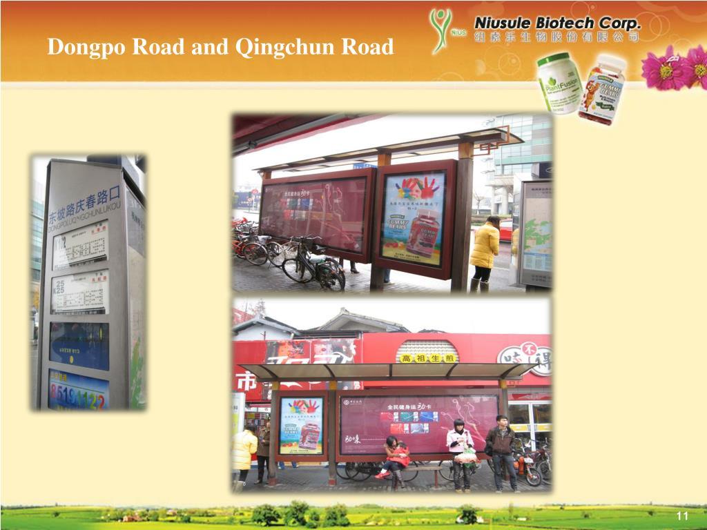 Dongpo Road and Qingchun