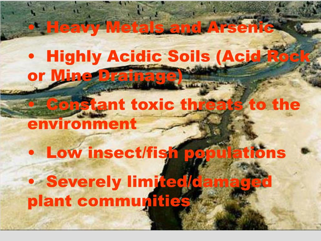 Heavy Metals and Arsenic
