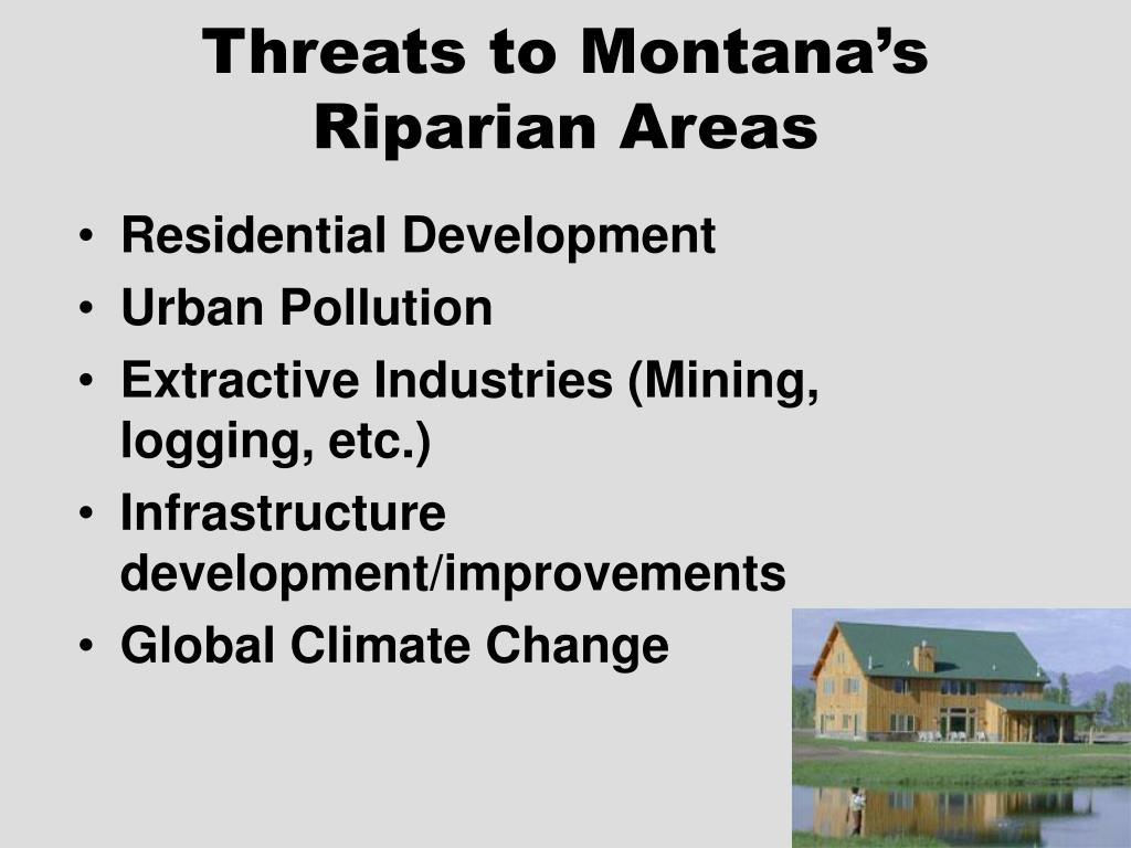 Threats to Montana's Riparian Areas