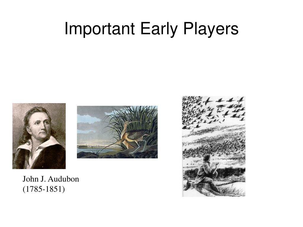 Important Early Players