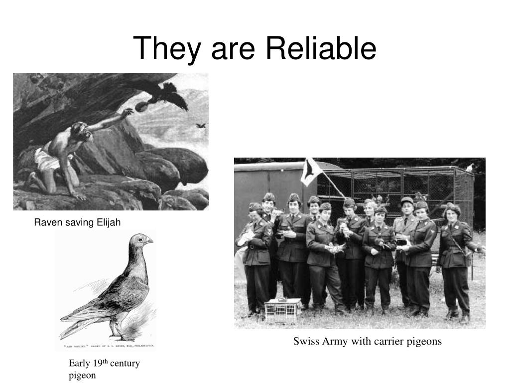 They are Reliable