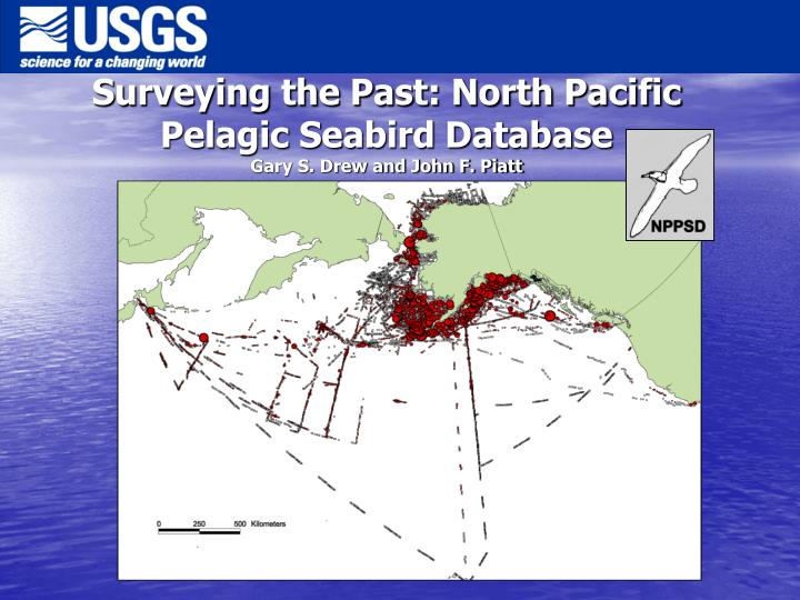 Surveying the past north pacific pelagic seabird database gary s drew and john f piatt