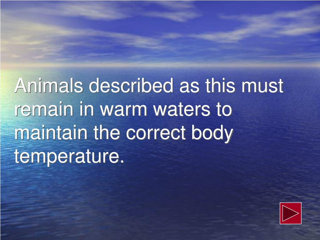Animals described as this must remain in warm waters to maintain the correct body temperature.