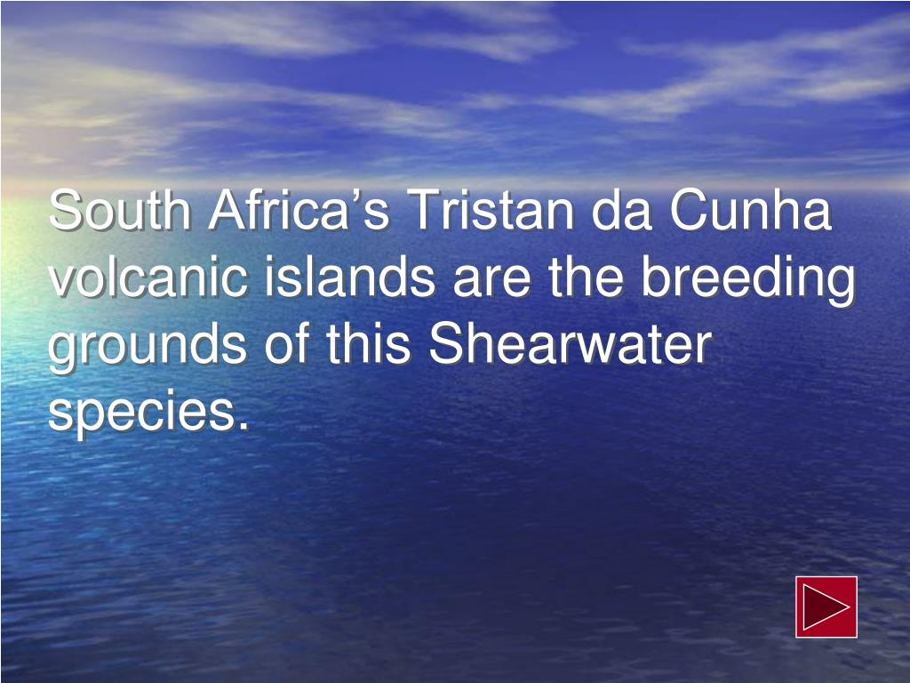 South Africa's Tristan