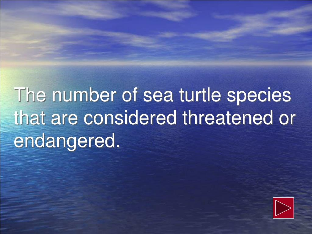 The number of sea turtle species that are considered threatened or endangered.