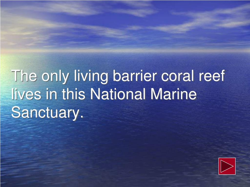 The only living barrier coral reef lives in this National Marine Sanctuary.