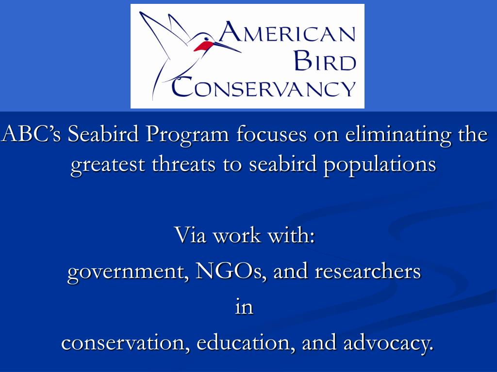 ABC's Seabird Program focuses on eliminating the greatest threats to seabird populations